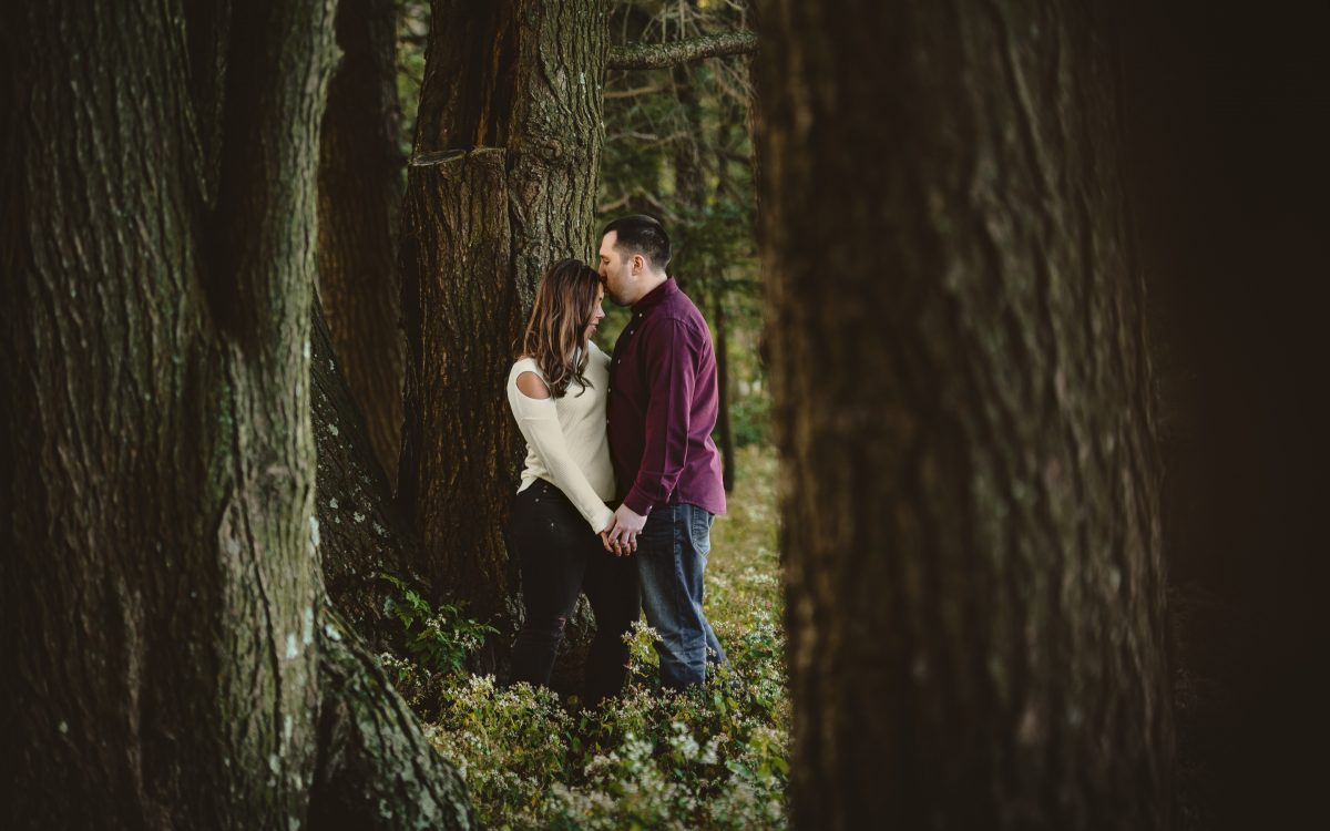 Topsmead State Forest Engagement Session